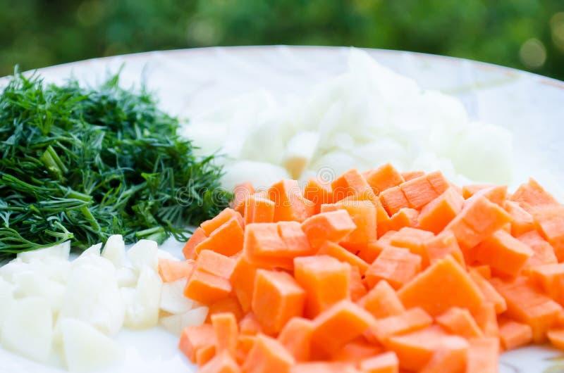 Τεμαχισμένοι καρότα, σκόρδο, κρεμμύδια και άνηθος Πορτοκάλι και πράσινος Πράσινα και λαχανικό ρίζας o r Λαχανικά στοκ φωτογραφίες με δικαίωμα ελεύθερης χρήσης