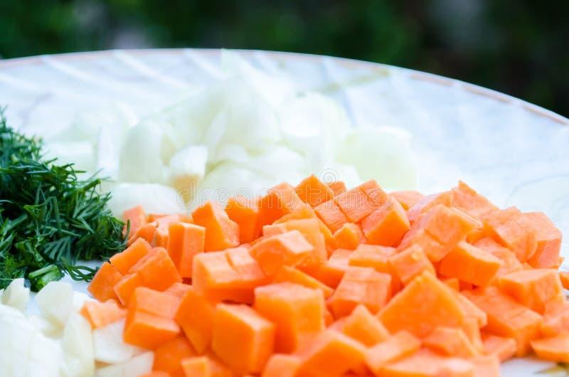 Τεμαχισμένοι καρότα, σκόρδο, κρεμμύδια και άνηθος Πορτοκάλι και πράσινος Πράσινα και λαχανικό ρίζας : στοκ εικόνες