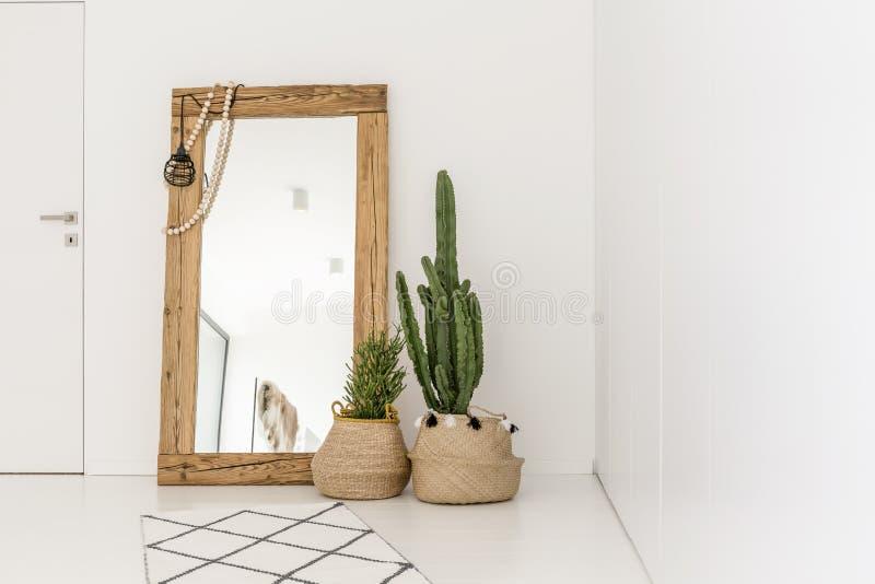 Τεράστιος καθρέφτης στο δωμάτιο στοκ φωτογραφίες με δικαίωμα ελεύθερης χρήσης