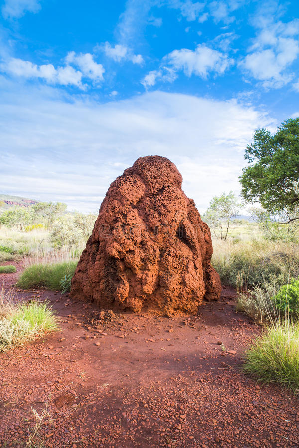 Τεράστιο ανάχωμα Αυστραλία λόφων τερμιτών μυρμηγκιών στοκ φωτογραφία