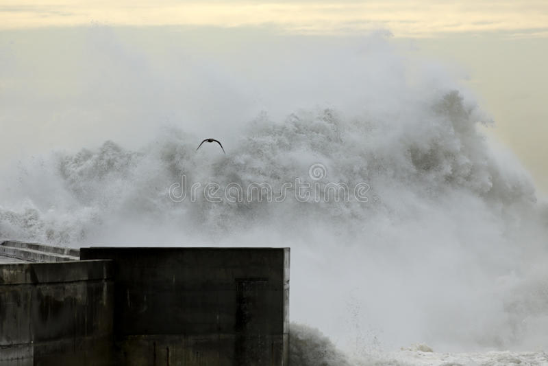 Τεράστιο σπάζοντας κύμα που πλησιάζει μια αποβάθρα στοκ φωτογραφίες