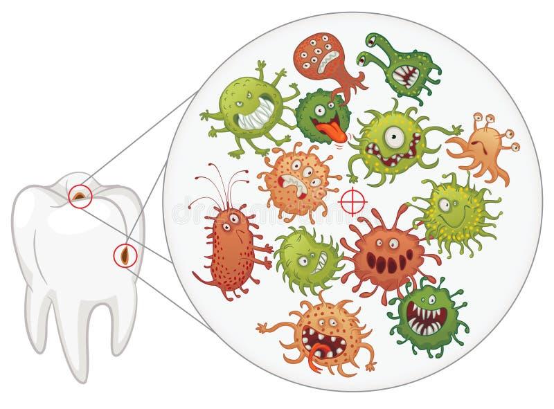 Τερηδόνα. Αστεία βακτηρίδια και δόντι διανυσματική απεικόνιση
