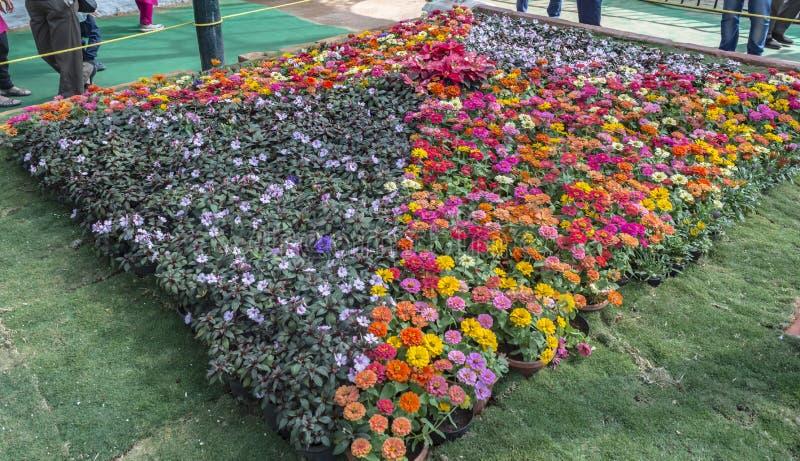 Τετραγωνική ρύθμιση της επίδειξης λουλουδιών στοκ φωτογραφία με δικαίωμα ελεύθερης χρήσης