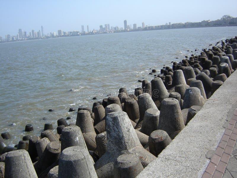 Τετρα-λοβοί στην ακτή Mumbai στοκ εικόνες