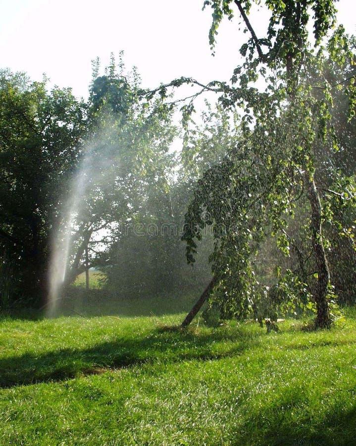 τεχνητή βροχή στοκ φωτογραφία με δικαίωμα ελεύθερης χρήσης