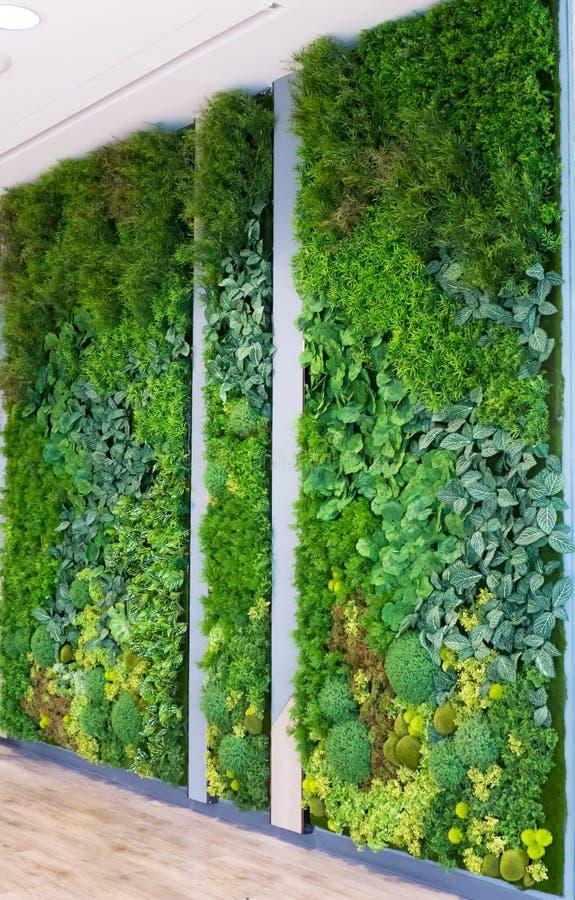 Τεχνητοί κάθετοι κήποι με τις πλαστές εγκαταστάσεις στους τοίχους στοκ φωτογραφίες με δικαίωμα ελεύθερης χρήσης
