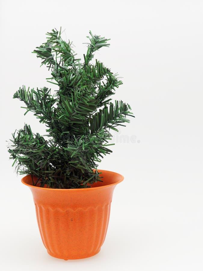 Τεχνητό δέντρο πεύκων στο πορτοκαλί πλαστικό δοχείο εγκαταστάσεων με διαστιγμένος και γδυμένος στο άσπρο υπόβαθρο στοκ εικόνες