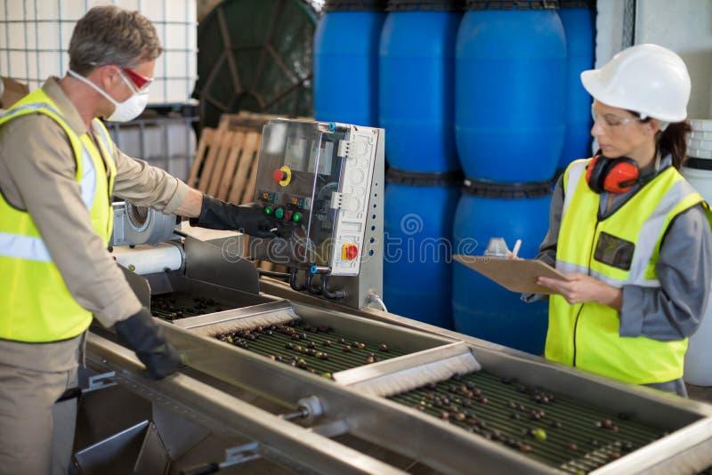 Τεχνικοί που ενεργοποιούν τη μηχανή επεξεργαμένος τις ελιές στοκ φωτογραφία με δικαίωμα ελεύθερης χρήσης