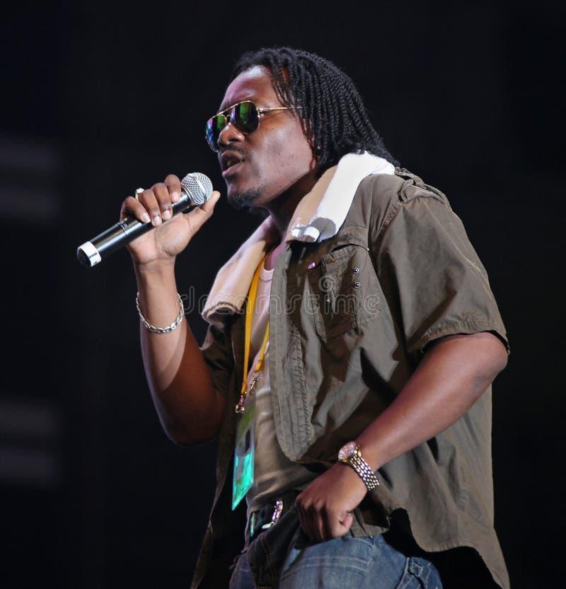 Τζαμαϊκανό έλος Andrae καλλιτεχνών στοκ φωτογραφία με δικαίωμα ελεύθερης χρήσης