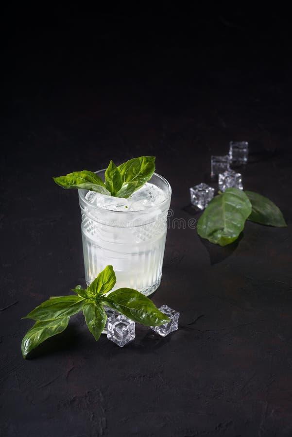 Τζιν ή βότκα με τις φέτες μεντών του λεμονιού και του πάγου σε ένα σκοτεινό υπόβαθρο Κοκτέιλ οινοπνεύματος με τα εσπεριδοειδή και στοκ φωτογραφίες με δικαίωμα ελεύθερης χρήσης