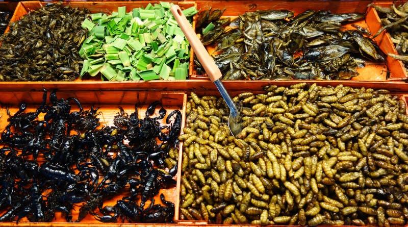 τηγανισμένα έντομα στοκ εικόνες
