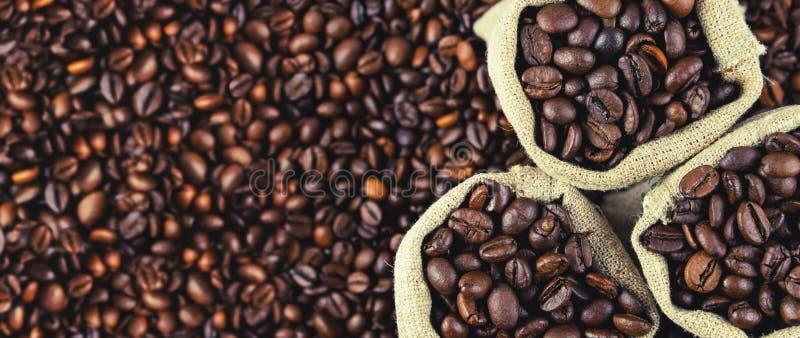 Τηγανισμένα φασόλια καφέ στα μικρά baggies E r στοκ εικόνες με δικαίωμα ελεύθερης χρήσης