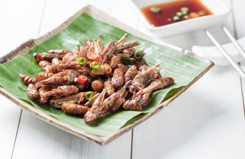 Τηγανισμένα grasshoppers και τηγανισμένοι τηγανισμένοι wormor μεταξοσκώληκες στοκ φωτογραφία
