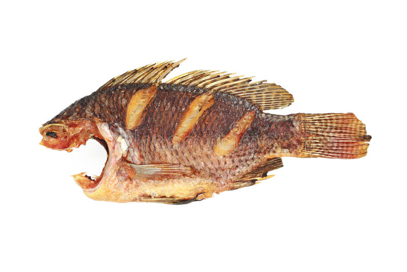 τηγανισμένα tilapia ψάρια χωρίς κεφάλι που απομονώνεται στο λευκό στοκ φωτογραφίες με δικαίωμα ελεύθερης χρήσης