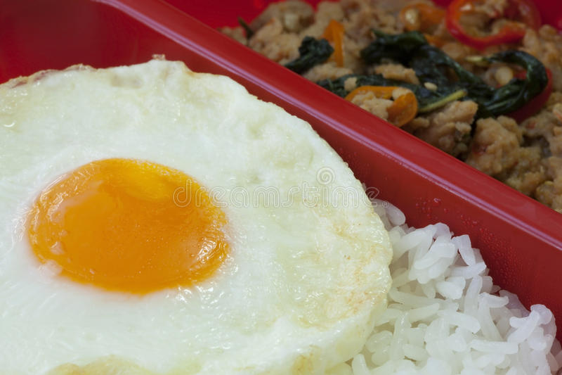 Τηγανισμένο βασιλικός κοτόπουλο και τηγανισμένο αυγό στοκ εικόνες με δικαίωμα ελεύθερης χρήσης