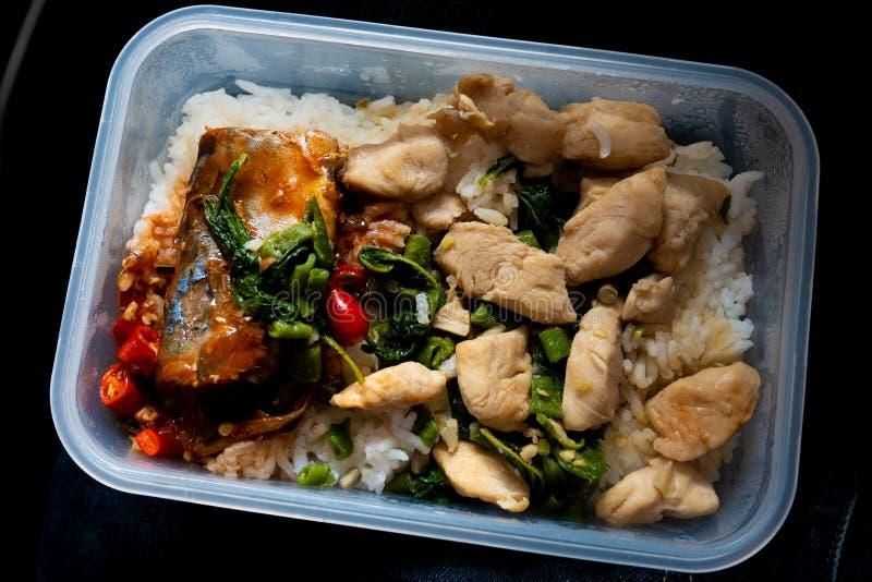 Τηγανισμένο κοτόπουλο με το βασιλικό που εξυπηρετείται με τα κονσερβοποιημένα ψάρια στο ρύζι στοκ εικόνα