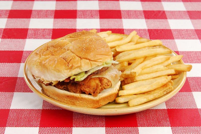 τηγανισμένο κοτόπουλο σά στοκ φωτογραφίες με δικαίωμα ελεύθερης χρήσης