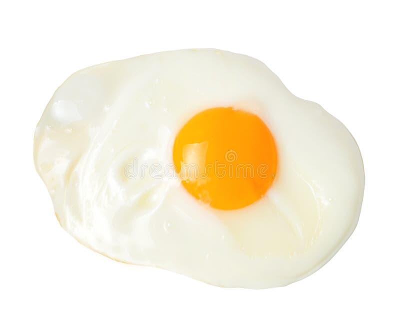 Τηγανισμένο ορεκτικό αυγό απομονωμένο στο λευκό υπόβαθρο E r στοκ εικόνα