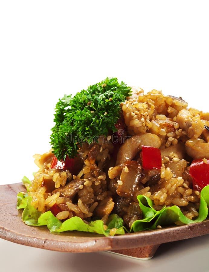 Τηγανισμένο ρύζι με το στήθος κοτόπουλου στοκ εικόνα με δικαίωμα ελεύθερης χρήσης