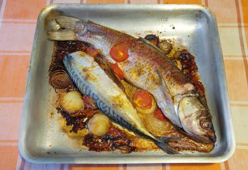 τηγανισμένο ψάρια ταψάκι στοκ εικόνες