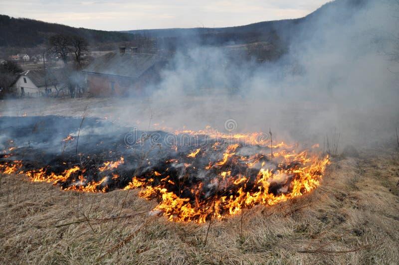 Την άνοιξη, μια ξηρά χλόη καίγεται στοκ φωτογραφίες με δικαίωμα ελεύθερης χρήσης