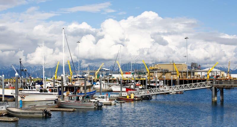 Της Αλάσκας - Ομήρου Boat Harbor αλιευτικός στόλος στοκ φωτογραφία με δικαίωμα ελεύθερης χρήσης