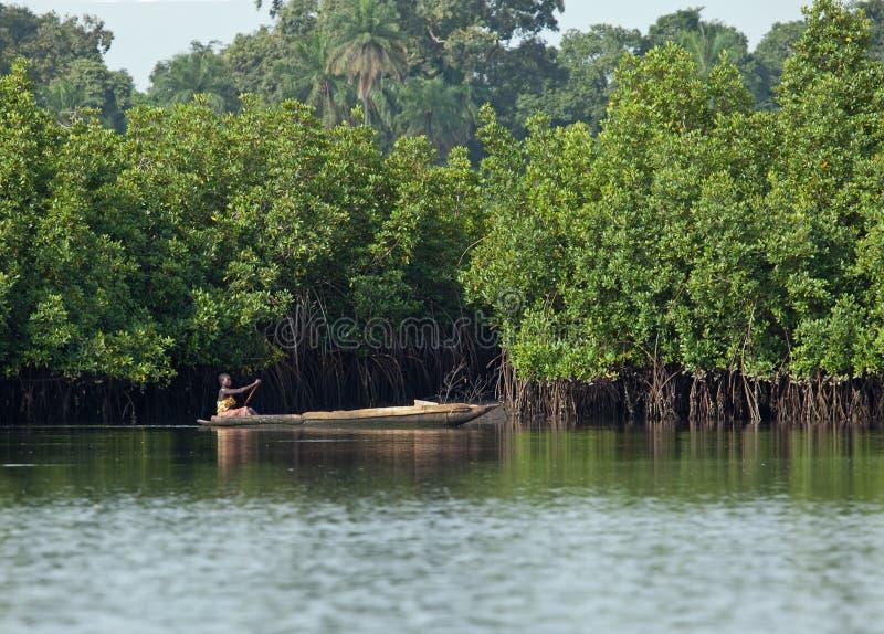 της Γκάμπια κωπηλατώντας &gamm στοκ φωτογραφία με δικαίωμα ελεύθερης χρήσης