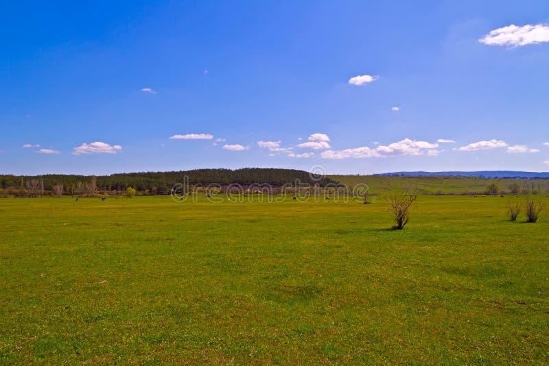 Της Κριμαίας στέπα στοκ φωτογραφία