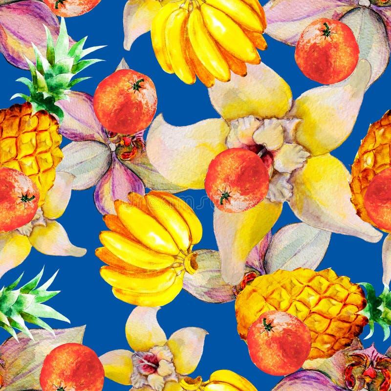 Της Χαβάης άνευ ραφής σχέδιο watercolor με τα τροπικά φρούτα και τα λουλούδια διανυσματική απεικόνιση