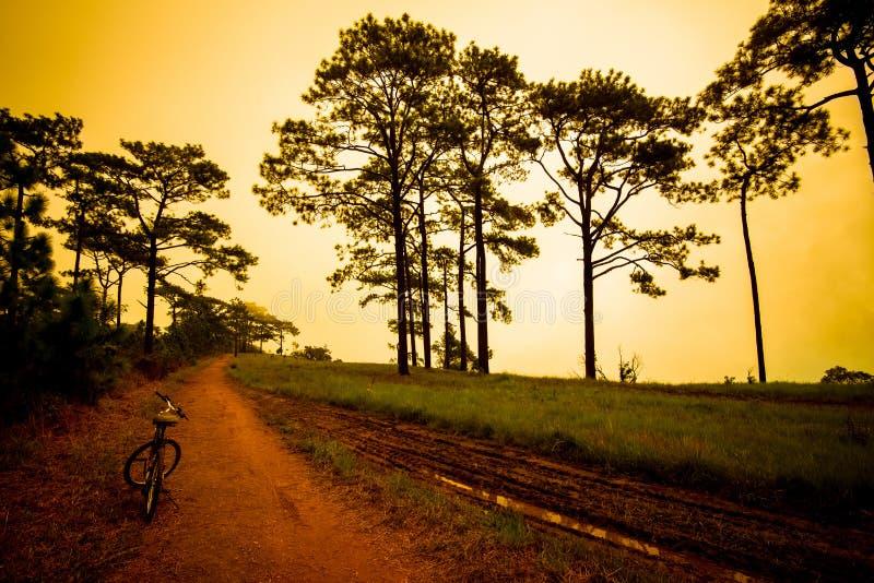 Τιμωρία ποδηλάτων γύρου στοκ εικόνα με δικαίωμα ελεύθερης χρήσης