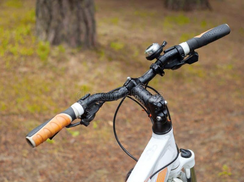 Τιμόνι ποδηλάτων σε ένα θολωμένο υπόβαθρο των κορμών χλόης και δέντρων στοκ εικόνες με δικαίωμα ελεύθερης χρήσης
