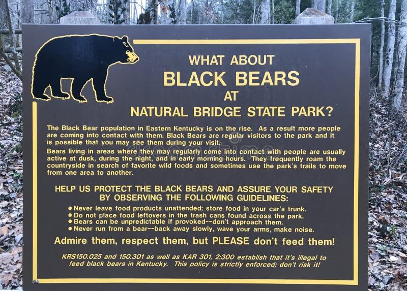 Τι γίνεται με το Μαύρο αντέχει στο φυσικό κρατικό πάρκο γεφυρών; στοκ φωτογραφίες