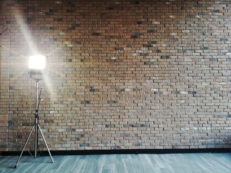 Τοίχοι από γύψο και σπόρια στοκ φωτογραφίες με δικαίωμα ελεύθερης χρήσης