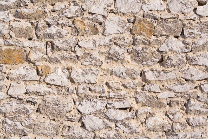 τοίχος ασβεστόλιθων στοκ φωτογραφία