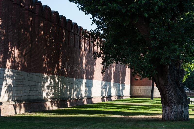 Τοίχος και ξύλο δύο γίγαντας-τούβλου στοκ εικόνες