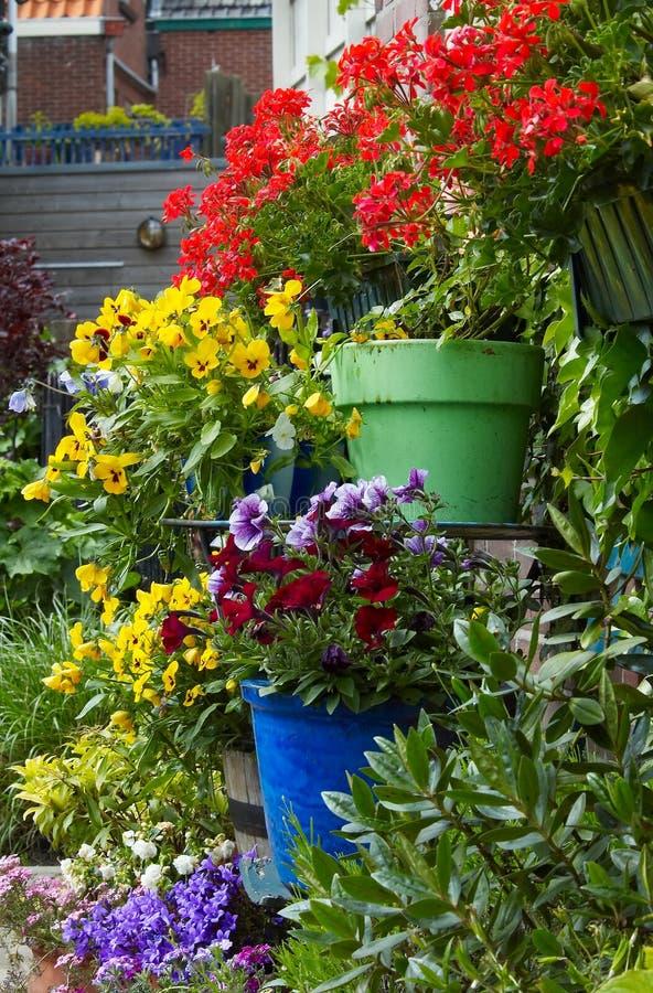 τοίχος λουλουδιών στοκ φωτογραφία