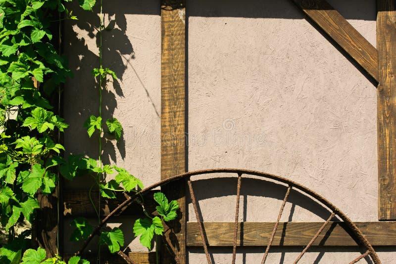 Τοίχος του χαρακτηριστικού αγροτικού σπιτιού με το φύλλωμα σταφυλιών και τη ρόδα σιδήρου στοκ εικόνες