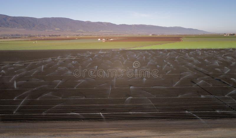 Τομέας γεωργίας άρδευσης σε Καλιφόρνια, Ηνωμένες Πολιτείες στοκ εικόνα με δικαίωμα ελεύθερης χρήσης