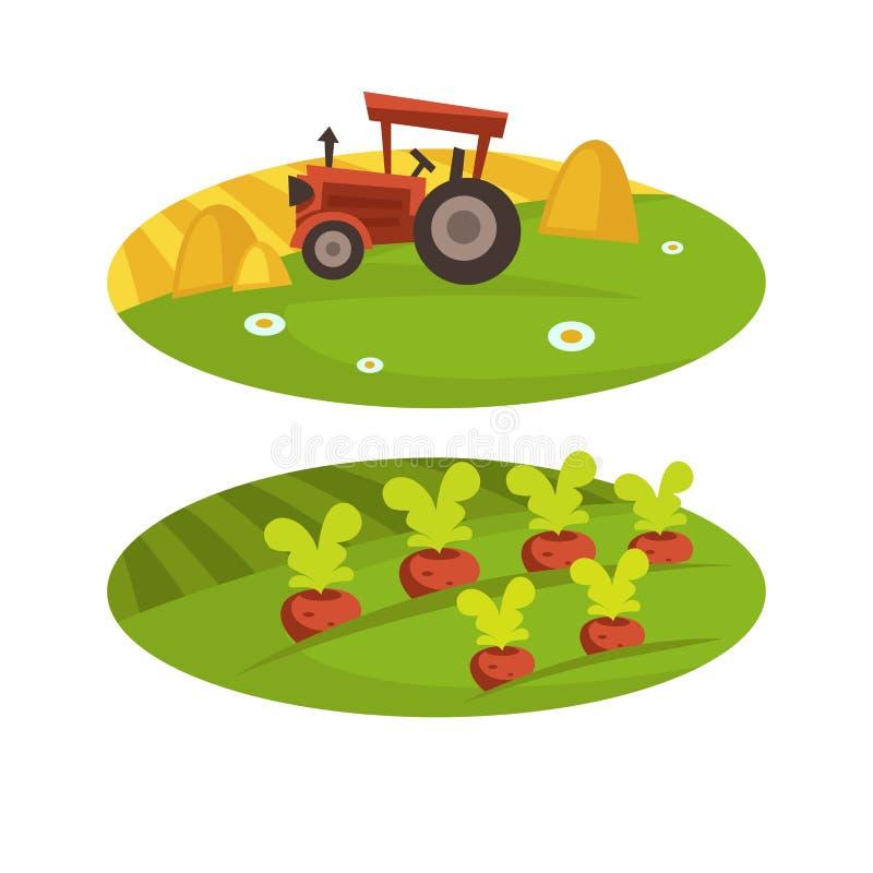 Τομέας και τρακτέρ συγκομιδών αγροτικής γεωργίας με το διανυσματικό επίπεδο καλλιεργήσιμο έδαφος κινούμενων σχεδίων σανού σίτου απεικόνιση αποθεμάτων