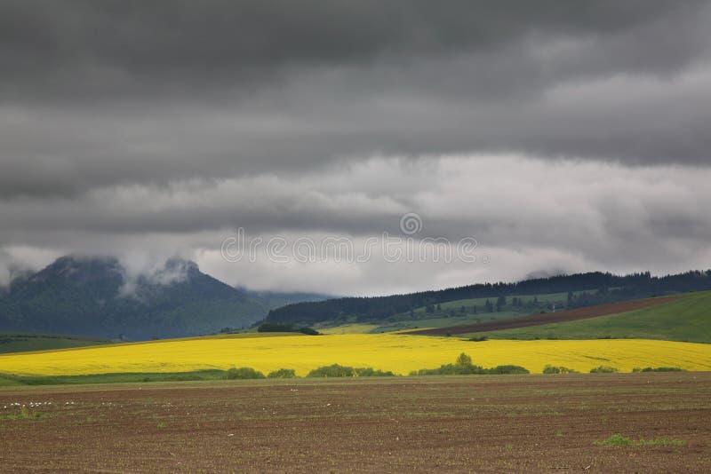Τομέας και λόφοι κοντά σε Zilina Σλοβακία στοκ εικόνα