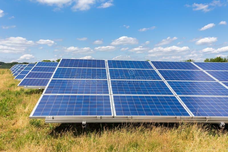 Τομέας με τις σειρές των μπλε ηλιακών συσσωρευτών στη χλόη στοκ φωτογραφία με δικαίωμα ελεύθερης χρήσης