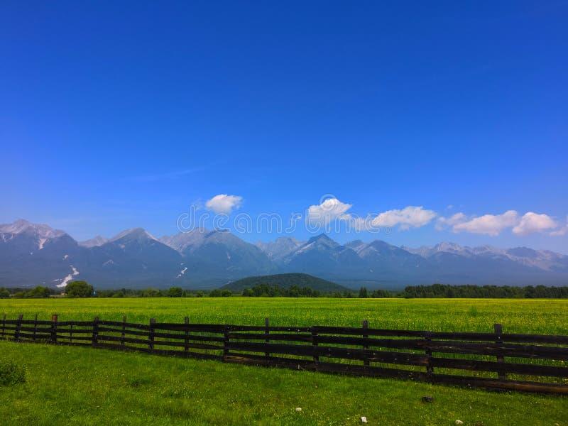 Τομέας πίσω από το φράκτη ενάντια στα βουνά και το μπλε ουρανό Καλοκαίρι Sayan στοκ εικόνα