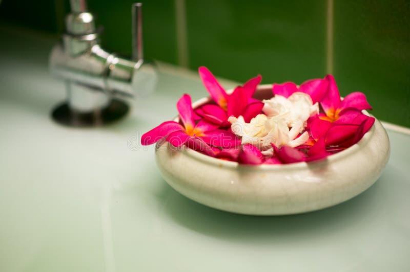 Τομέας Lotus στοκ φωτογραφίες με δικαίωμα ελεύθερης χρήσης