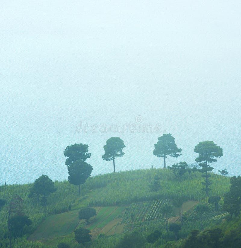 Τομείς Γουατεμάλα κορυφών υψώματος στοκ εικόνες