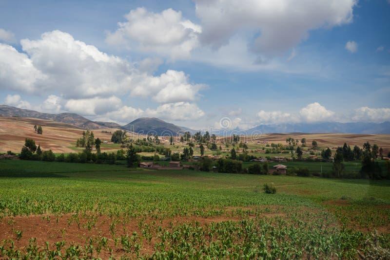 Τομείς καλλιέργειας κοντά σε Cuzco σειρά του Περού, η Άνδεις στοκ εικόνα