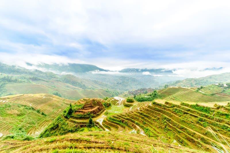 Τομείς πεζουλιών ρυζιού από το longesheng στην Κίνα στοκ εικόνες