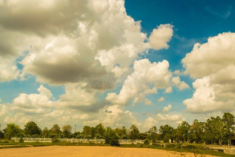 Τομείς ρυζιού στη περίοδο ανομβρίας Αγροτικές περιοχές της Ταϊλάνδης μια νεφελώδη ημέρα στοκ εικόνες