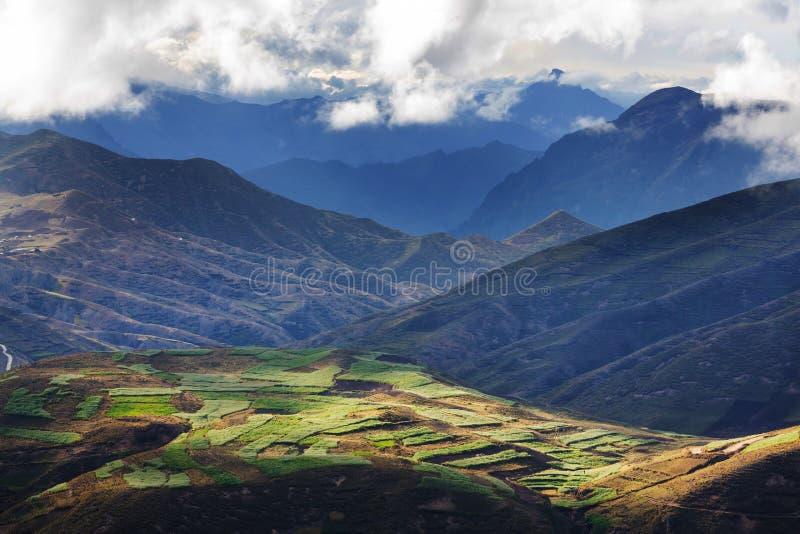 Τομείς στο Περού στοκ φωτογραφίες