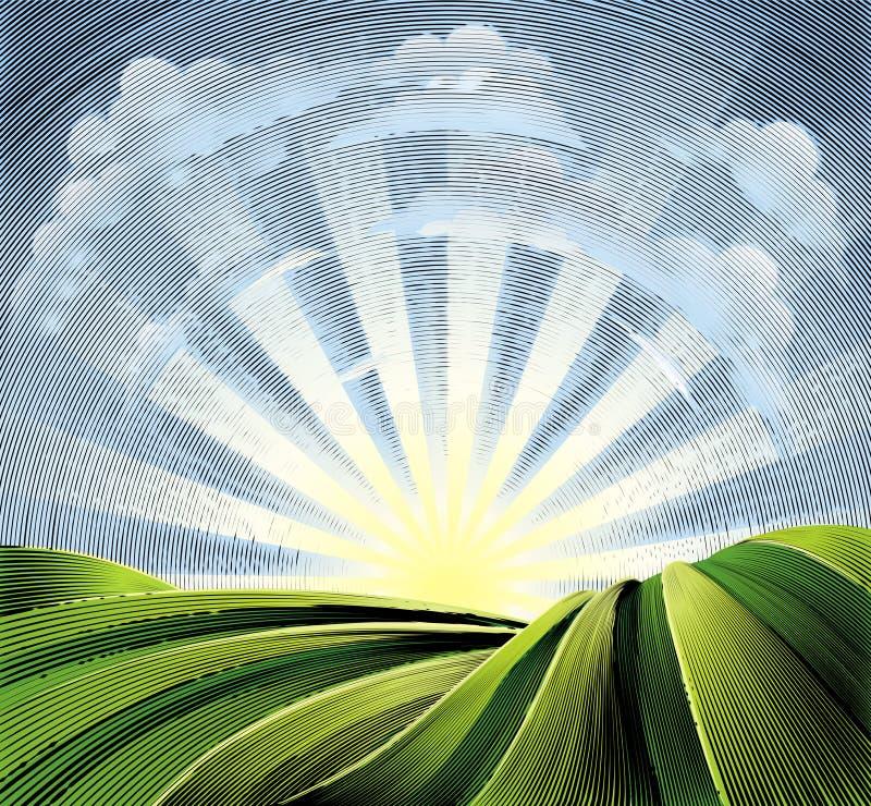 Τομείς τους λόφους και τον ήλιο που χαράσσονται που κυλούν χαρακτική απεικόνιση αποθεμάτων
