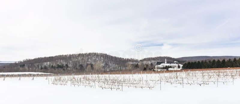 Τομείς Wineyards κατά τη διάρκεια του χειμώνα σε Oka, Κεμπέκ, Καναδάς στοκ εικόνες